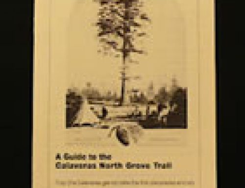 North Grove Trail Guide
