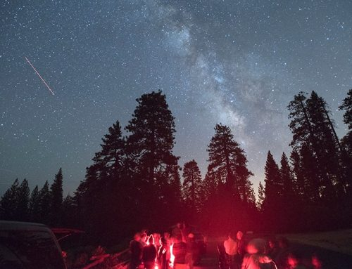 Astronomy Nights at the Park
