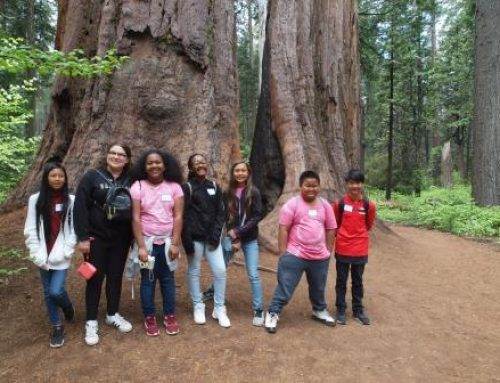 Transportation Scholarships Bring Buses to Big Trees