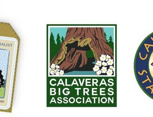 Register Now for 2019 California Naturalist Program